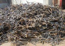 全国各地一级破碎料大量回收